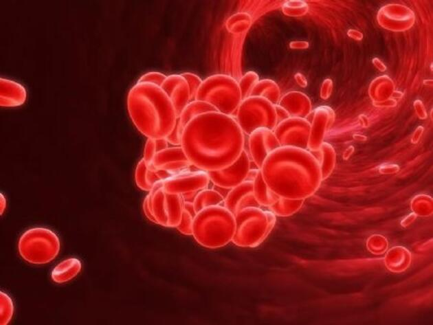 Kan gruplarına göre beslenme şekilleri