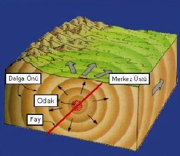 deprem bilimi simoloji nedirnasil siniflandirilir bilgiustamrem