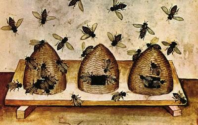 kovan etrafında uçuşan arılar