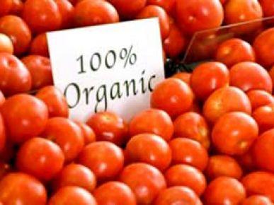 organik-besin-nedir