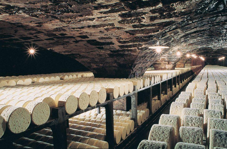Rokfor Peyniri üretimi
