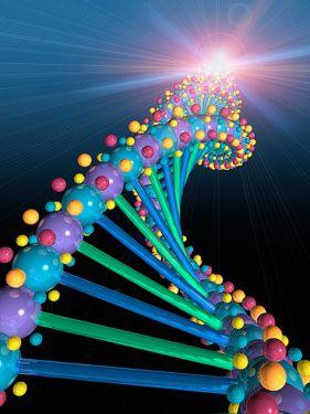 genetik bilimi resmi