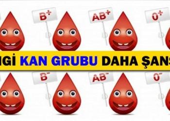 hangi kan grubu daha sansli