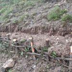 insan gucuyle yapilan agaclandirma teraslari isci gucu ile toprak isleme