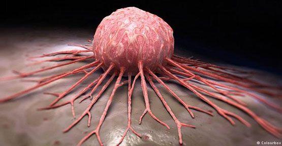 kanser hakkında bilgiler