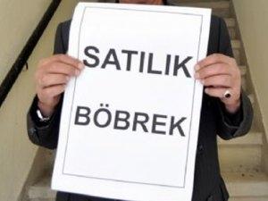 b C Bbrek