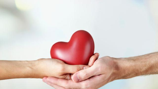 organ bagisi haftasi    o dfdced fe e e bba